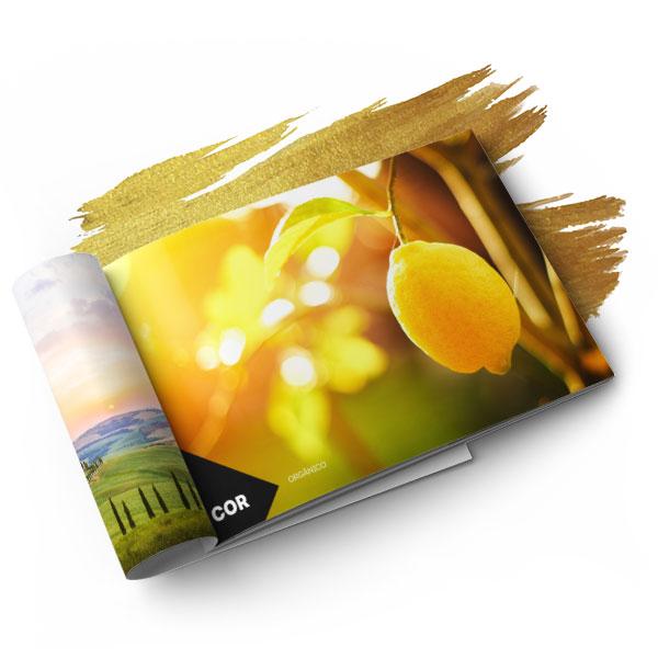 brandbook-02